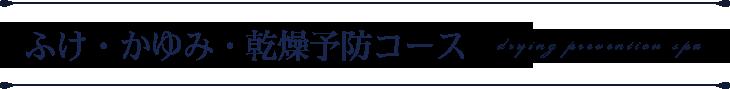ふけ・かゆみ・乾燥予防コース