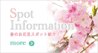 2013年最新のお花見スポット情報をご紹介!
