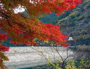 名栗湖・有間渓谷 紅葉スポット