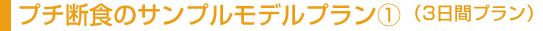 ジュースクレンジングのサンプルモデルプラン�@(3日間プラン)