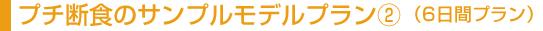ジュースクレンジングのサンプルモデルプラン�A(6日間プラン)