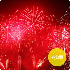 第25回 なにわ淀川花火大会